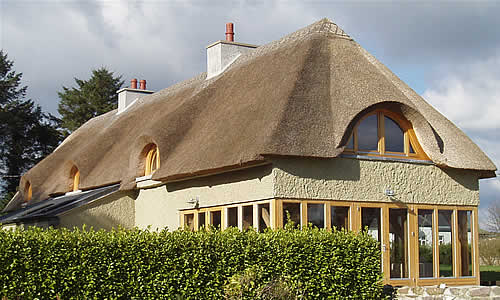 this is an old home given new life by a thatched roof and a conservatory - Thatched Rood