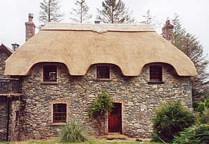 Thatching Second Story And Dormer Windows